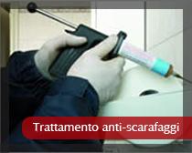 Trattamento anti scarafaggi